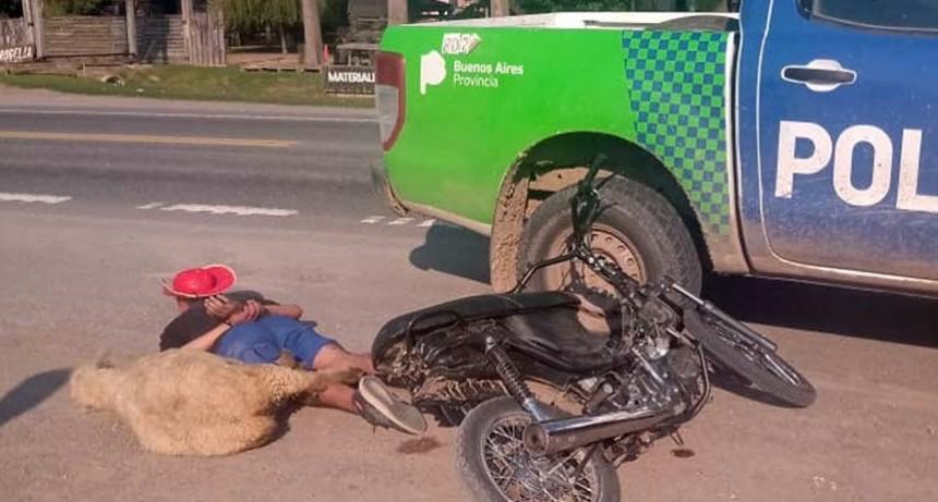 Un hombre y un cordero huían en moto por la Ruta 205