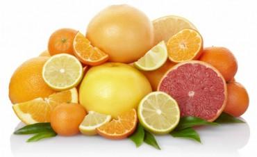 Alimentos que nos ayudan a prevenir la gripe