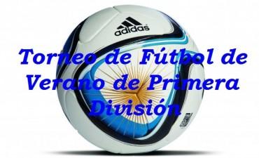 Torneo de Verano de primera división: posiciones y próxima fecha